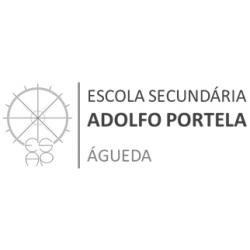 Escola Secundária Adolfo Portela - Águeda